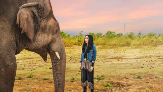 Cher and the Loneliest Elephant (2021) Full Movie - HD 720p