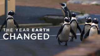 The Year Earth Changed (2021) Full Movie - HD 720p