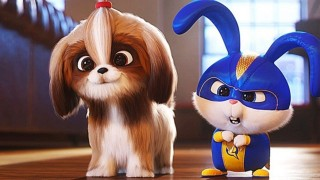 the secret life of pets 2 (2019) Full Movie - HD 1080p